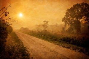 road-871849_19202